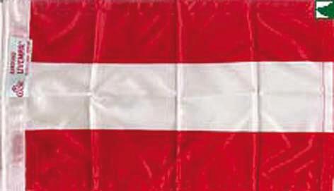 BANDERA  AUSTRIA 30*20